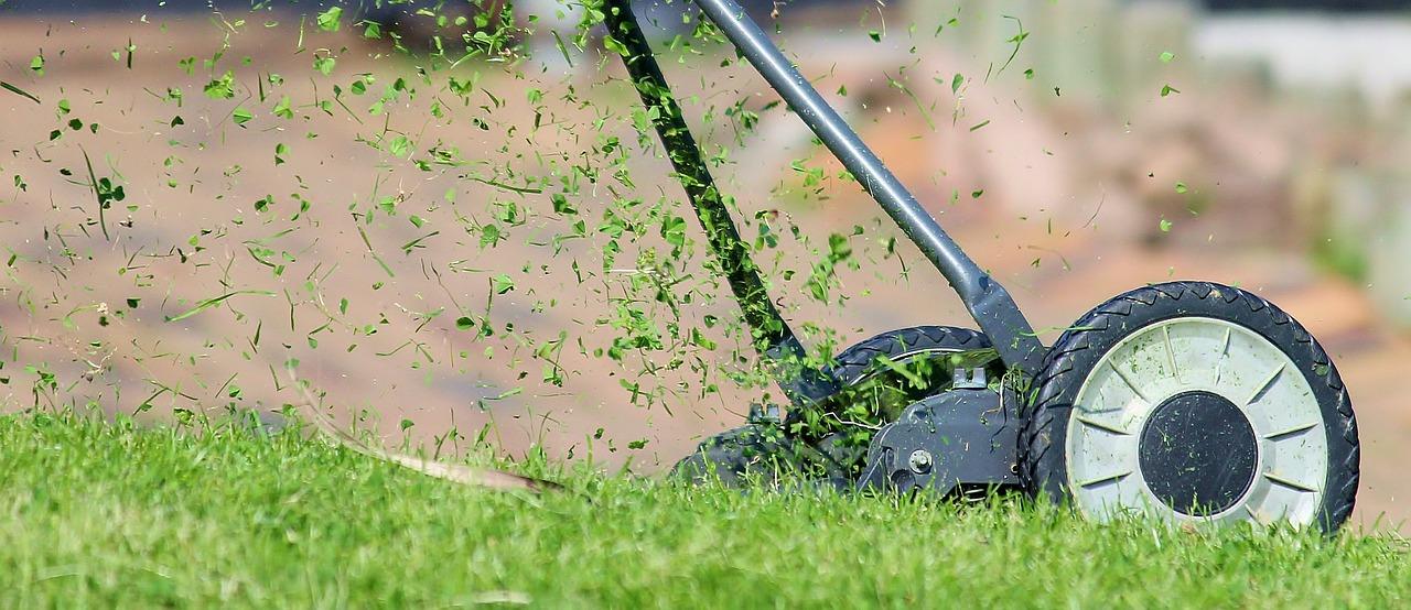 Aérer la pelouse : Comment, quand et pourquoi est-ce nécessaire ?