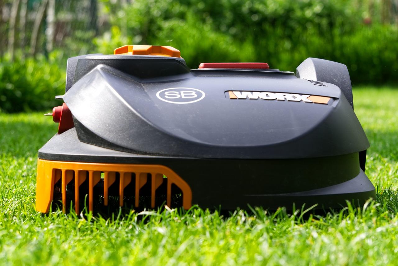 Anti-moustiques naturel : Des plantes comme meilleurs remède pour votre jardin